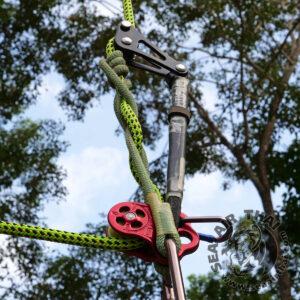 รอกงานต้นไม้ รอกปีนต้นไม้ รอก 3 รู ใช้ในงานขึ้นหรือลงต้นไม้ ระบบ SRS และ MRS ทำจากอลูมิเนียม น้ำหนักเบาพกพาง่าย เหมาะกับนักปีนต้นไม้ หรือรุกขกรอาชีพ DMM